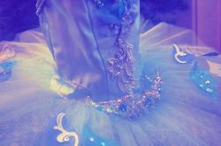 フロリナ王女のVa. AN